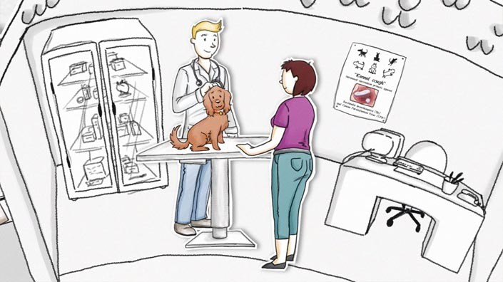 Project Infectious Tracheobronchitis Animation